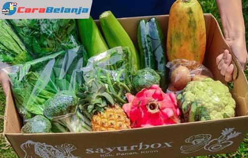 Belanja Sayur Online 1