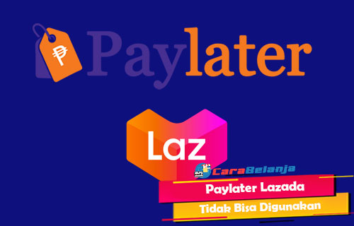 Paylater Lazada Tidak Bisa Digunakan